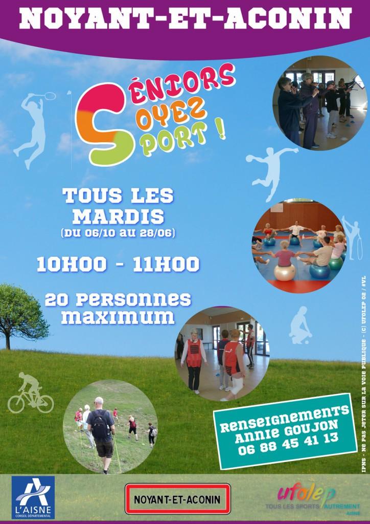 Affiche-Seniors_soyez_sport-Saison_2015_2016-1000